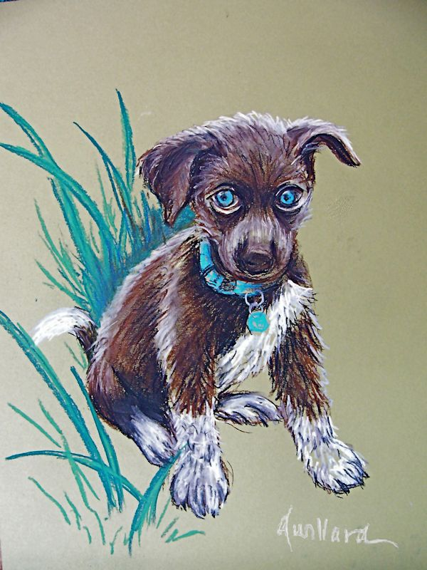 Precious Puppy!